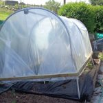 First Tunnels Mini Polytunnel Review