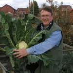 12 Tips for Success with Leafy Brassicas