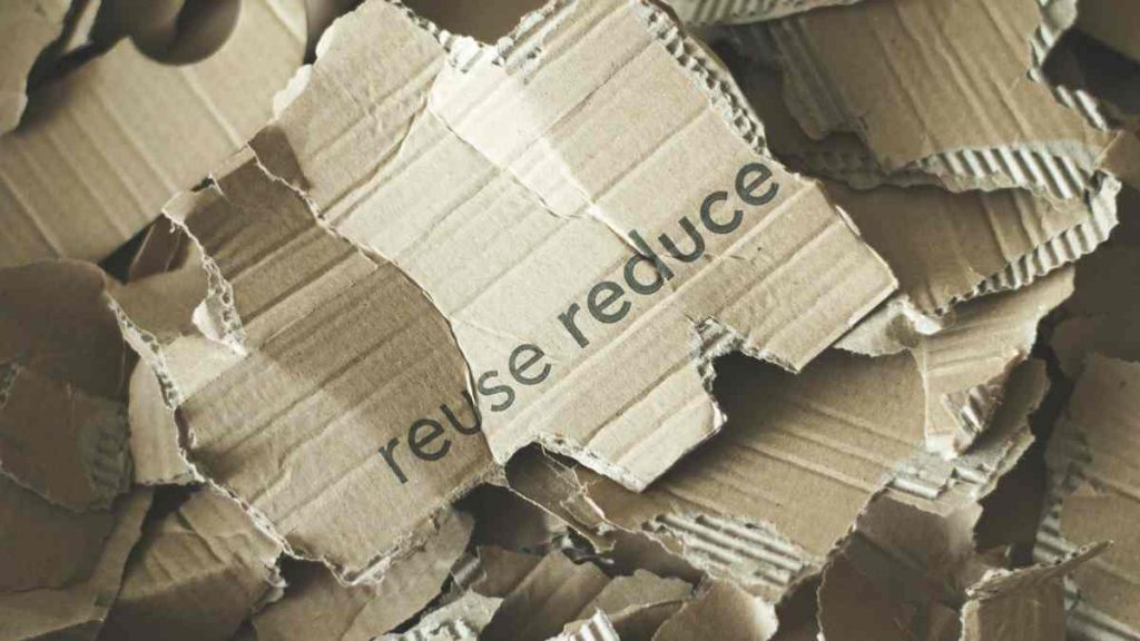 cardboard compost