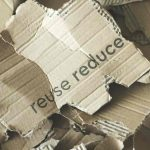Using Paper & Cardboard in Compost