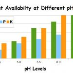 Effects of pH on Nutrient Availability