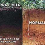 Biochar & Terra Preta