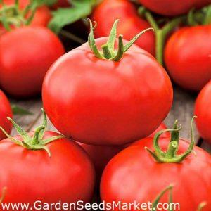 Tomato Alka