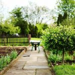 Here is How Having and Maintaining a Back Garden Allotment Could Help You to Sell Your Home