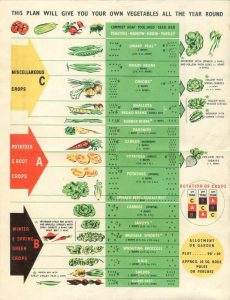Wartime Planting Chart