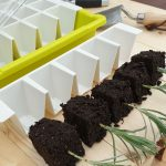 Bustaseed Modular Propagation System Review