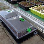 Salad & Veg Planter Review